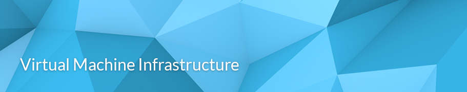 VMware Virtual Machine Infrastructure